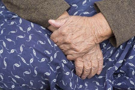 purpule: Elderly Womans Hands, A Detail of An Old Woman Hands On Her Traditional Skirt. Stock Photo