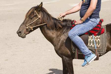 Rider seated on backside of a small horse holding lariat by right hand