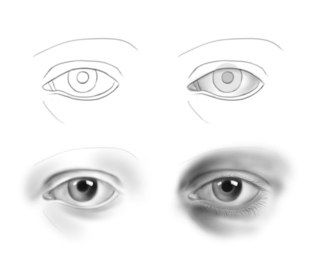 Hand-drawn human eye - step by step drawing guide