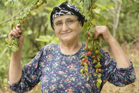 Portrait of an elderly woman with eyeglass holding plum tree branches at garden, senor agricultural activity