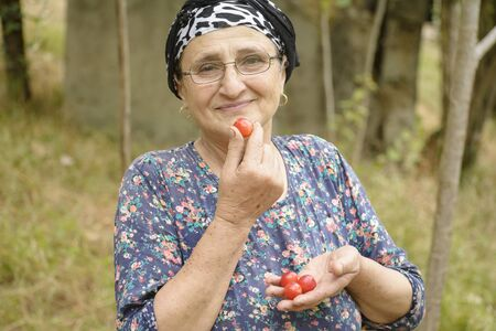 Happy senior woman holding red plums in hand and choose one of them for eating