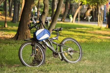 A bicycle laid on tree trunk at park outdoor area  grass field