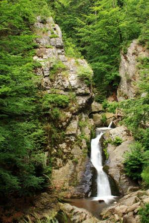 brake fern: Waterfall in Jeseniky mountains in Czech Stock Photo