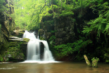 forest stream: Waterfall in Jeseniky mountains in Czech Stock Photo