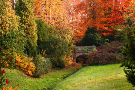 Beautiful autumn park Stock Photo - 3969383