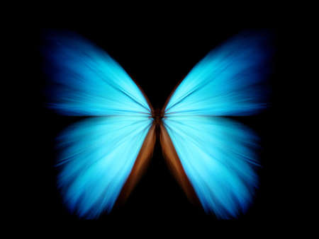 lightsome: Morpho zoom Stock Photo