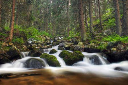 The mountain river in Rila mountains in Bulgaria photo