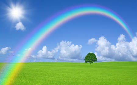 Green field with lone tree and rainbow Stock Photo