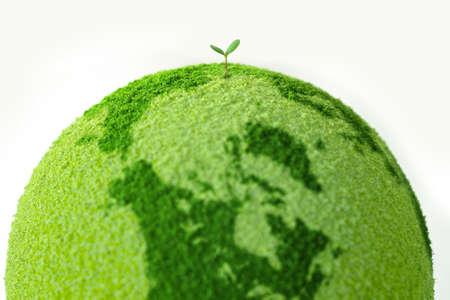 planeta verde: Planeta con el �rbol y brotes Foto de archivo
