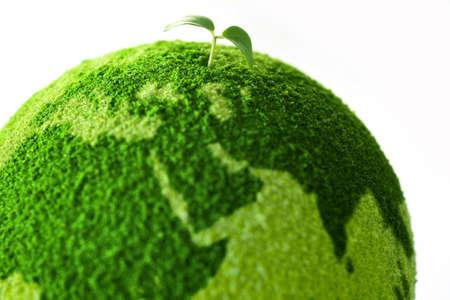 Planeta con el árbol y brotes Foto de archivo - 9387943