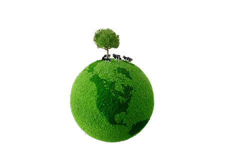 Calf standing on green earth photo
