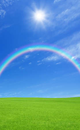 Green grass and rainbow photo