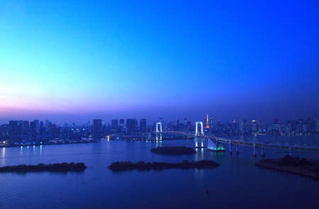 View of Tokyo downtown at night with Rainbow Bridge
