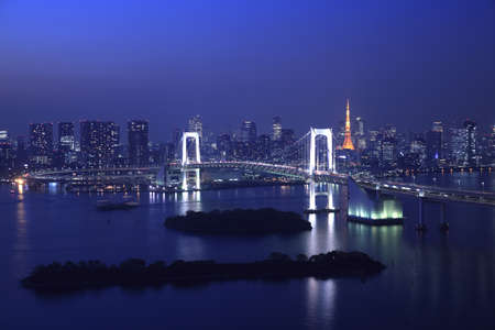 View of Tokyo downtown at night with Rainbow Bridge Stock Photo - 11987292