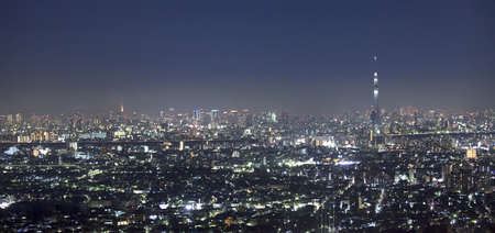 pano: Vew of night Tokyo with Sky Tree.