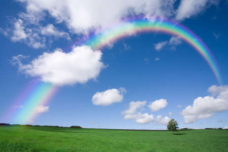 refraction of light: Beautiful colourful rainbow over an empty green field with a single line of trees on the skyline.