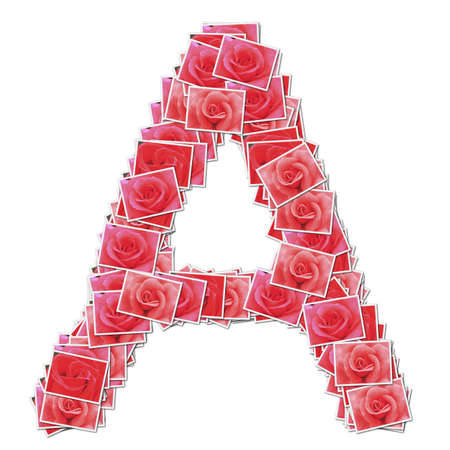 Alphabet Font, made from rose photo. Stock Photo