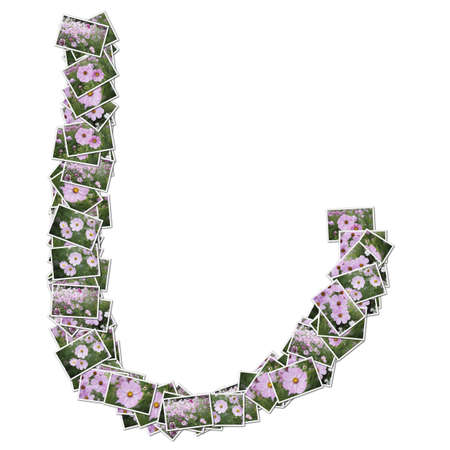 Japanese Characters hiragana, made from flower photo. Stock Photo - 12594790