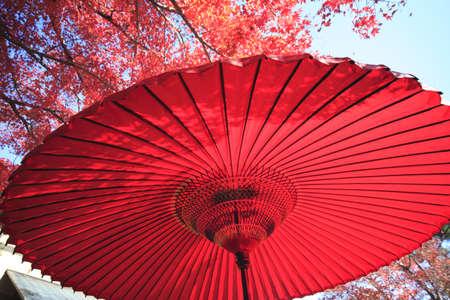 Japanese red umbrella  Imagens