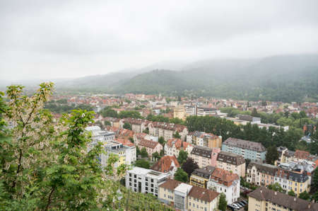 City of freiburg with misty and hazy low hanging cloud with focus on plant in foreground Editorial