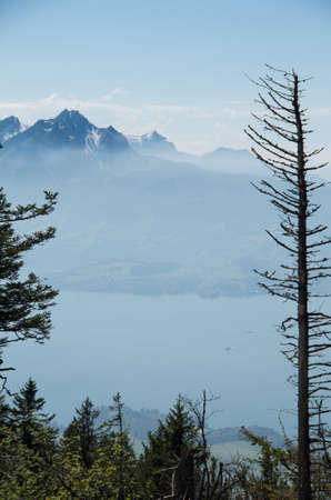 Mount Pilatus as seen from mount rigi with a leafless tree in the foreground and lake lucerne in the middle Фото со стока