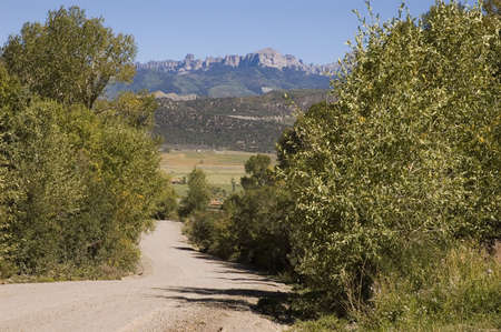 Road to Ridgway Valley