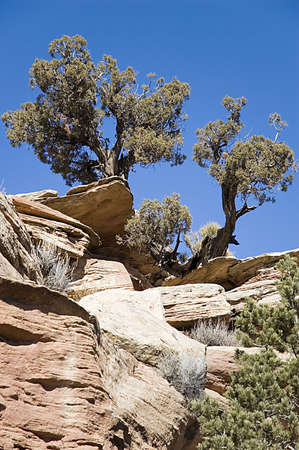 Desert Cliff in Colorado National Monument Stock Photo