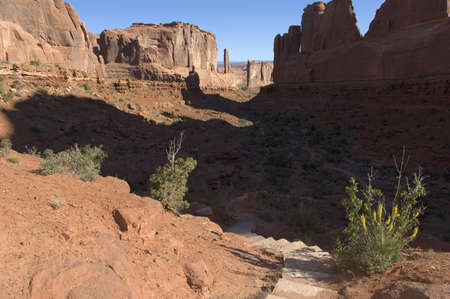 Arches trail in the morning