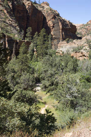 Canyon trail in Zion National Park Stock Photo