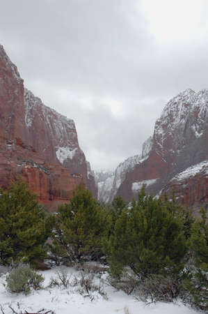 Kolob Canyons Snowstorm