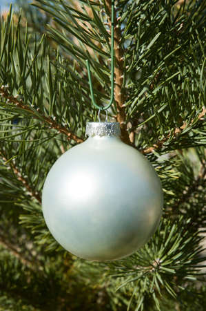 Christmas Ball with Blank Surface photo