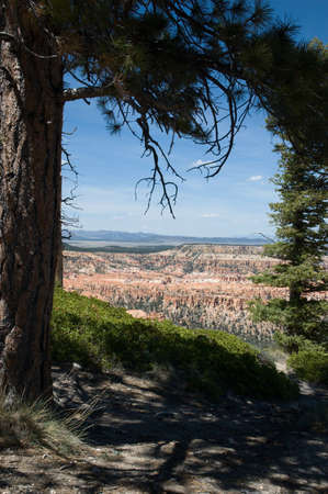Rim of Bryce from Bryce Point
