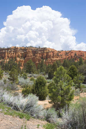 Cloud over Red Canyon, Utah