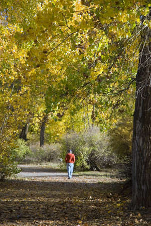 Senior man walking on a trail under autumn cottonwoods at Connected Lakes State Park, Colorado