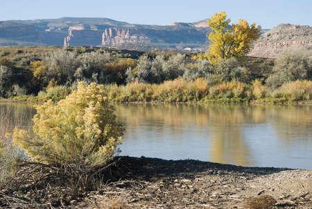 Colorado River near Fruita, Colorado