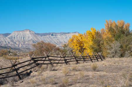 Connexion arbres de clôture et à l'automne près de Debeque, Colorado