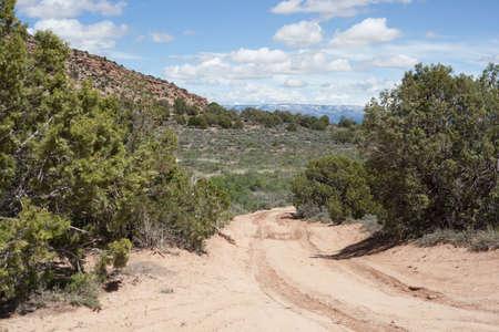 Dirt Road avec ornières de roues