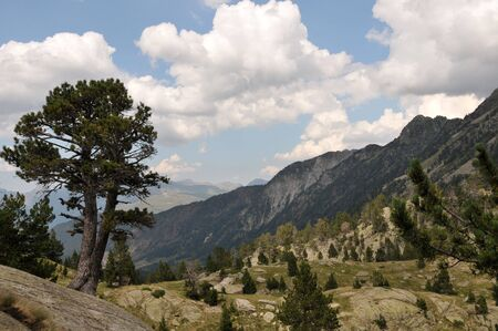 Beautiful view of Spanish Pyrenees mountains Stock Photo - 6870093