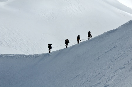 climbing sport: View of a group hiking on slope of high Alps mountains.
