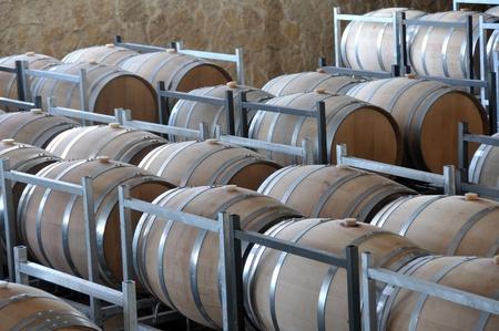 vintages: Wine aging in new oak barrels placing in rows
