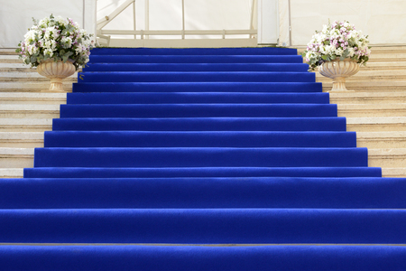blue carpet: View of a blue carpet staircase in an entrance of the building