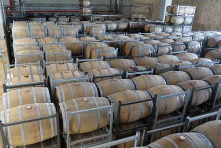 big cork: Wine aging in new oak barrels placing in rows