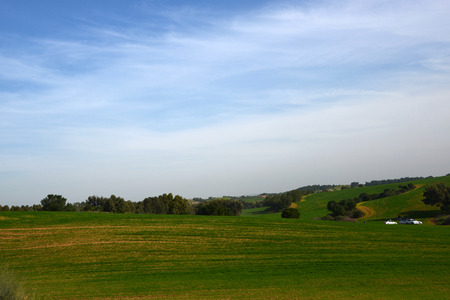 View of green meadows in spring