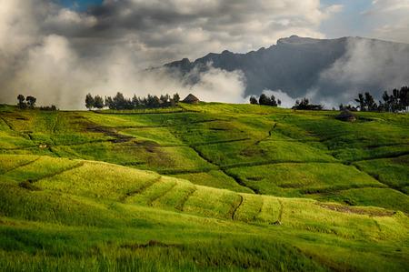 View of landscape below Simien mountains park, Ethiopia.