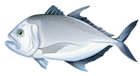 Ilustración de un ignobilis gigante trevally Caranx