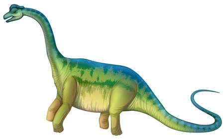 sauropod: Ilustraci�n detallada de un saur�podo Vectores