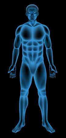 glowing skin: Ilustraci�n de un cuerpo masculino gen�rico Vectores