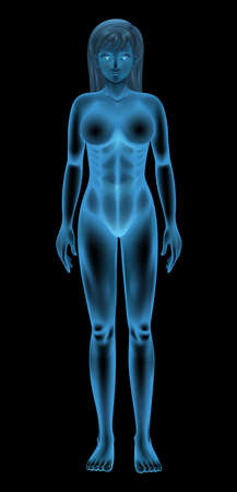 nude woman standing: illustration of a generic female body