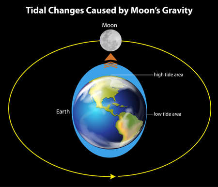 gravedad: Ilustración que muestra la Tierra, la luna y las influencia de las mareas
