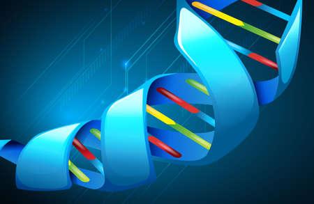 deoxyribonucleic: Illustration of Deoxyribonucleic acid structure